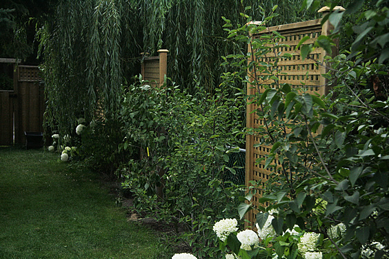 Screening your backyard for a peaceful private retreat for Backyard privacy screens trellis