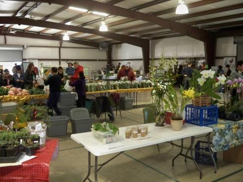Free Organic Gardening Seminar Offered to OKC Residents