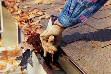 Keeping Your Yard Beautiful this Fall
