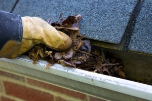 How to Properly Maintain Your Gutters at Home