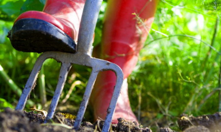 preparing-your-home-garden-for-spring-planting
